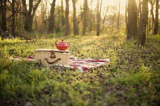 Afternoon_tea_by_nerdynotdirty_large