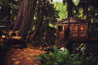 Treehouse-point-washington-seattle